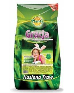 Trawa Gracja 2 kg – trawa niskorosnąca o szlachetnej, zielonej barwie