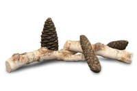Polana ceramiczne do biokominków 5 sztuk – zestaw E (brzoza + brązowe szyszki)