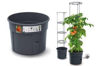 Doniczka do uprawy pomidorów Tomato Grower 28l antracyt