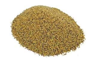 Koniczyna czerwona (łąkowa) odmiana Pyza 10 kg