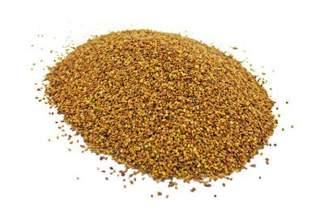 Lucerna siewna kwalifikowana, nasiona lucerny TRIADE - 5 kg