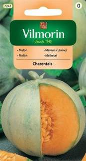 MELON CHARENTAIS 1g GC0 Vilmorin