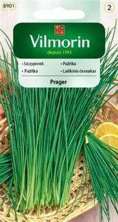 SZCZYPIOREK PRAGER 2g GC2 Vilmorin