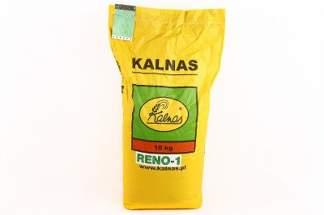Trawa Reno 10 kg firmy Kalnas – do renowacji trawników