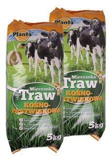 Trawa kośno-pastwiskowa M1 z roślinami motylkowymi Planta 10kg