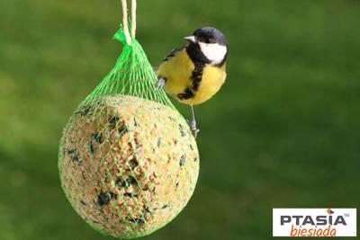 Kula tłuszczowa zimowa dla ptaków 90g Natural-Vit 6 szt tacka